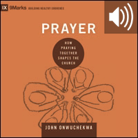 Prayer: How Praying Together Shapes the Church (audio)